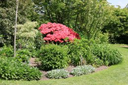 Cornwalls Gärten